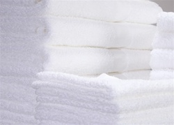 White Premium Terry Washcloths