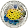 2014 $5 Marine Life Protection: Yellow Boxfish - Sterling Silver Coin