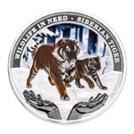 Tuvalu fine silver 2012 -  1 Dollar Elizabeth II Wildlife in Need: Siberian Tiger