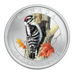 25C 2008 Colourised Coin - Downy Woodpecker