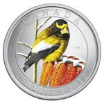 25c 2012 Coloured Coin - Evening Grosbeak