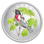 25c 2012 Coloured Coin - Rose-Breasted Grosbeak