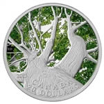 $20 2013 Fine Silver Coin - Canadian Maple Canopy (Spring)