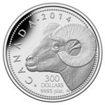 $300 2013 Platinum Coin - Rocky Mountain Bighorn Sheep