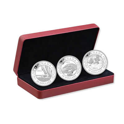 $20 2013 Fine Silver 3-Coin Set: Birth of the Royal Infant