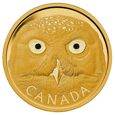 $2500 2014 Pure Gold Coin - In the Eyes of the Snowy Owl