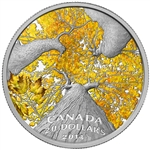 2014 $20 Fine Silver Coin - Maple Canopy: Autumn Allure