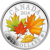 2014 $20 Fine Silver Coin - Majestic Maple Leaves with Colour