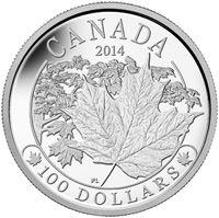 2014 $100 Fine Silver Coin - Majestic Maple Leaves