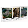 2014 Three-Coin Set (Silver, Gold, Platinum) - Celebrating Emily Carr