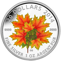 2014 $20 Fine Silver Coin - Maple Leaves