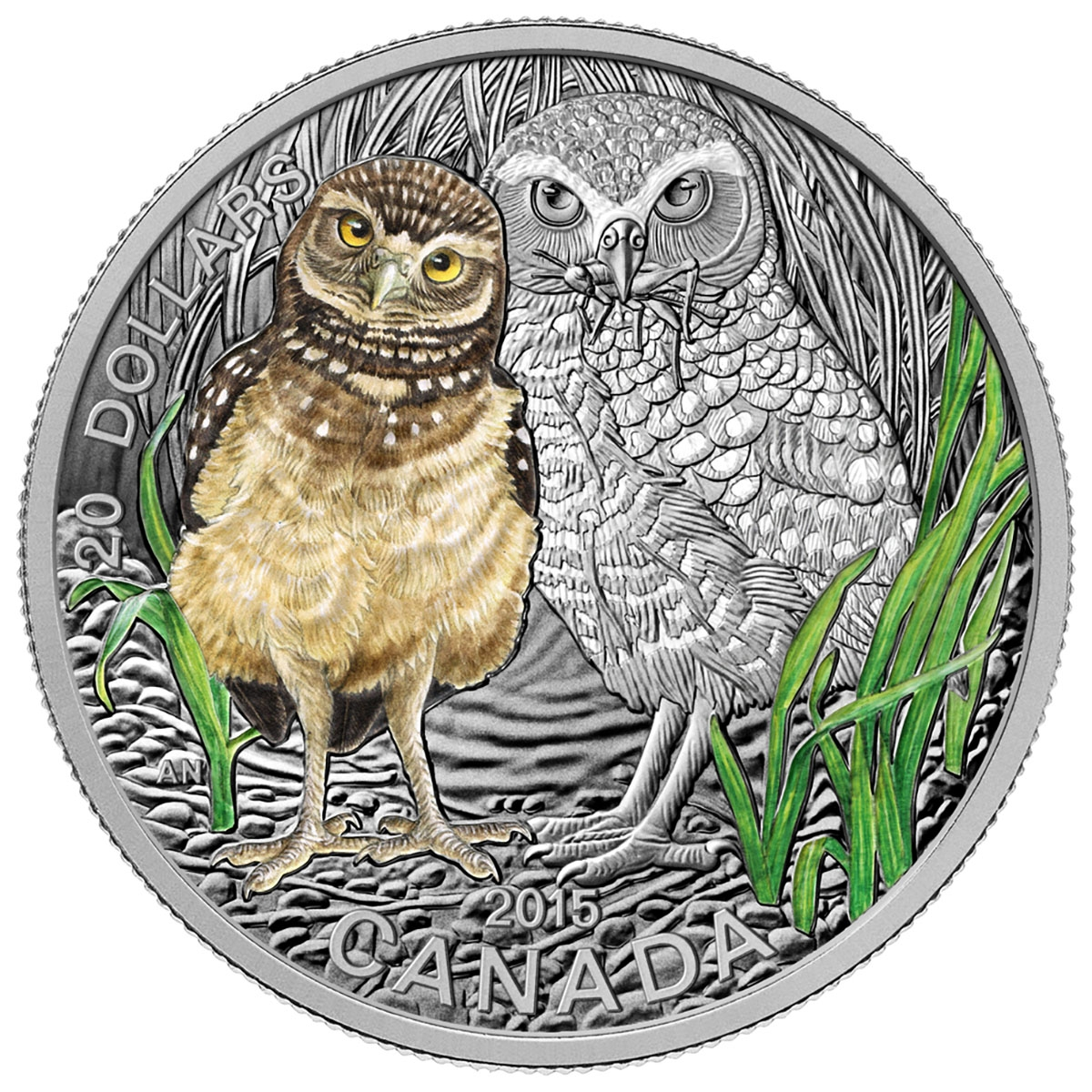 2015 20 Fine Silver Coin Baby Animals Burrowing Owl