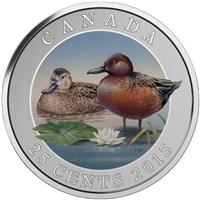 2015 25c Coloured Coin - Cinnamon Teal
