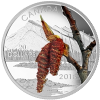 2015 $20 Boreal Balsam Poplar: Forests of Canada - Pure Silver Coin