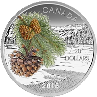 2015 $20 Fine Silver Coin - Forests of Canada: Coast Shore Pine
