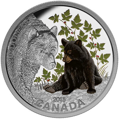 2015 $20 Fine Silver Coin - Baby Animals: Black Bear
