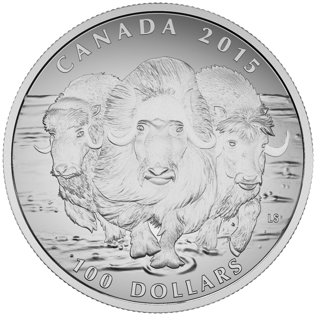 Canada 2016 Wildlife $100 Commemorative Cougar Pure Silver Matte Pf
