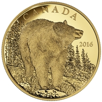 2016 $350 Pure Gold Coin - The Bold Black Bear