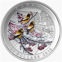 2015 $20 Fine Silver Coin - Weather Phenomenon: Winter Freeze