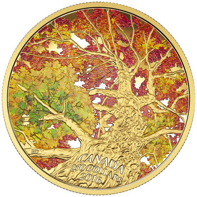 2016 $250 Kaleidoscope of Colour: Maple Canopy - Pure Gold Coin