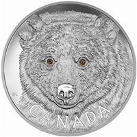2016 $250 Fine Silver Coin - In the Eyes of the Spirit Bear