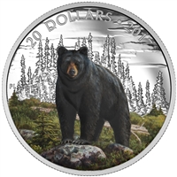 2017 $20 The Bold Black Bear - Pure Silver Coin