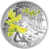 2016 $20 Fine Silver Coin - Jewel of the Rain: Bigleaf Maple