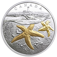 2017 $20 From Sea to Sea to Sea: Atlantic Starfish - Pure Silver Coin