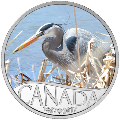 2017 $10 Fine Silver Coin - Celebrating Canada's 150th:  Great Blue Heron (Newbrunswick)