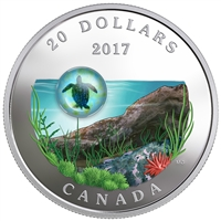 2017 $20 Under the Sea: Sea Turtle - Pure Silver Coin