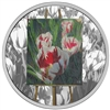 2017 $20 En Plein Air: Springtime Gifts - Pure Silver Coin
