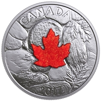 2017 $20 Majestic Maple Leaves with Drusy Stone - Pure Silver Coin