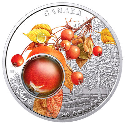 2018 $20 Mother's Nature's Magnification: Morning Dew - Pure Silver Coin