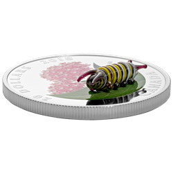 2018 $20 Little Creatures: Monarch Caterpillar - Pure Silver Coin