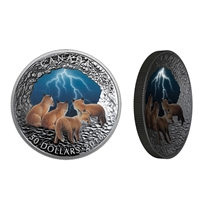 2018 $50 Nature's Light Show: Stormy Night - Pure Silver Coin