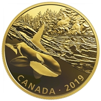 2019 $30 Golden Reflections: Predator and Prey – Orca and Sea Lions (SINGLE) - Pure Silver Coin