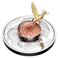 2020 $50 The Hummingbird and The Bloom - Pure Silver Coin