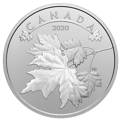 2020 $10 O Canada!: Maple Leaves - Pure Silver Coin