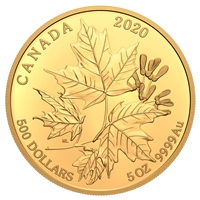 2020 $500 Splendid Maple Leaves - Pure Gold Coin