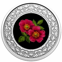 2020 $3 Floral Emblems of Canada - Alberta: Wild Rose -  Pure Silver Coin