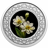 2020 $3 Floral Emblems of Canada - Northwest Territories: Mountain Avens -  Pure Silver Coin