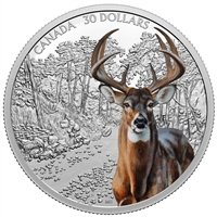 2020 $30 Imposing Icons: White-Tailed Deer - Pure Silver Coin (SINGLE)