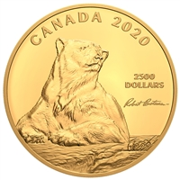 2020 $2500 Summertime Polar Bear, by Robert Bateman - Pure Gold Coin