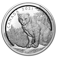 2021 $50 Multilayered Cougar - Pure Silver Coin