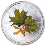 $5 2002 Coloured Maple Leaf - Spring