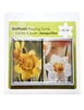 Daffodil - Set of Two Decks of Playing Cards