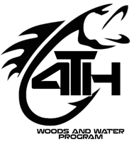 4-T-H Fish Auto Decal