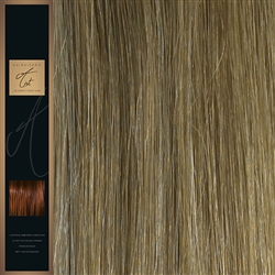 "A-List. 120 Grams Double Drawn Remy Hair Weft 20"" Colour 12/16/SB"