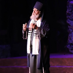 Nicodemus Theatrical Beard and Moustache Set