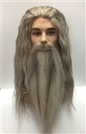 Dumbledore Wig, Beard and Moustache Costume Set